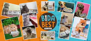 Happy dogs and cats eating BidaBest Pet Food