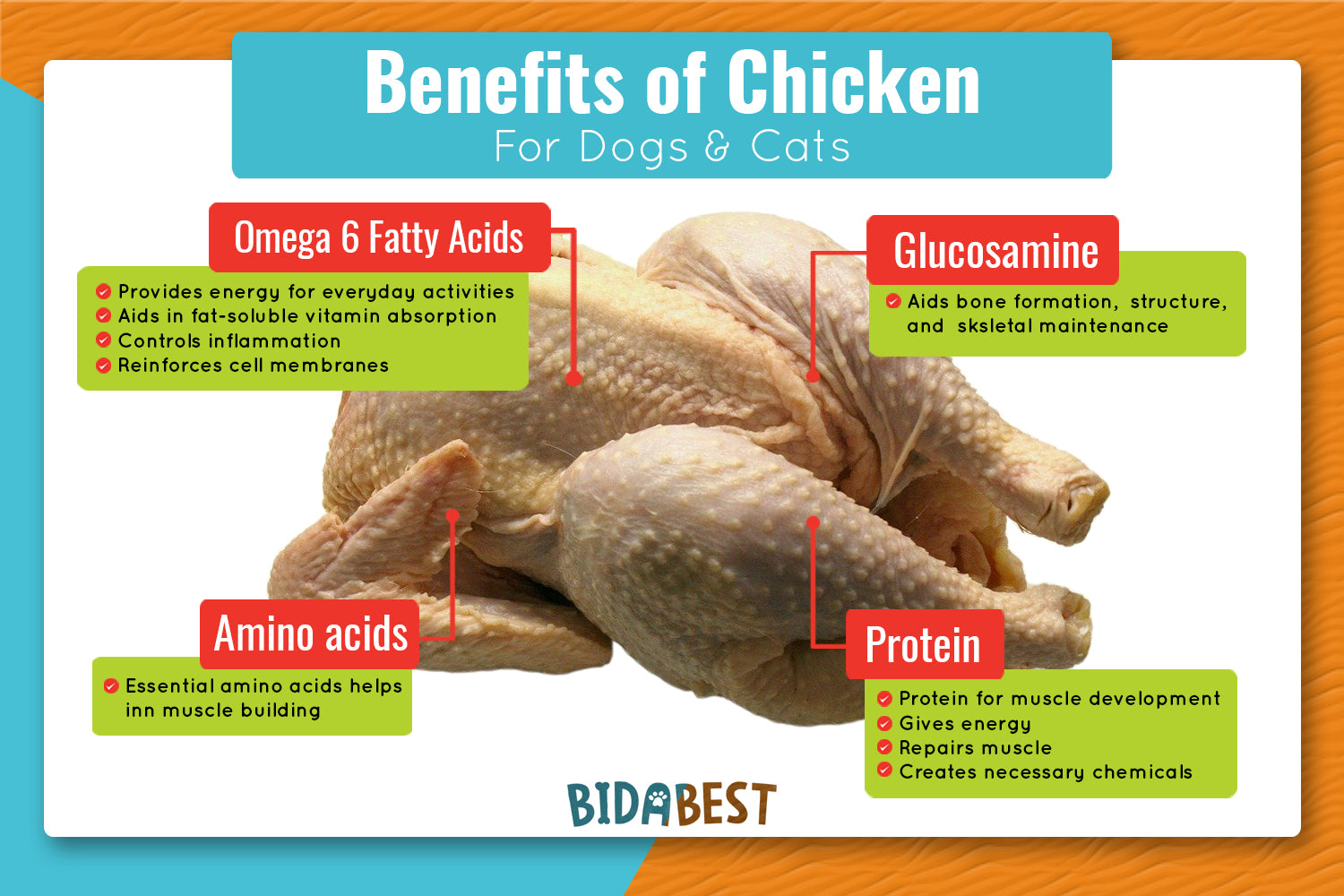 Benefits of chicken for dogs and cats