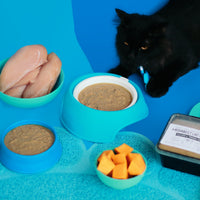 Cat eats BidaBest Pet food made with healthy ingredients.