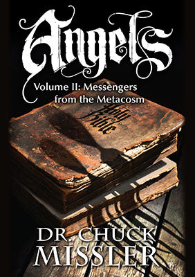 Angels, Volume II: Messengers from the Metacosm - Book