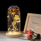 Beauty and The Beast Roses in a Glass Dome Women Valentine's Day Gift
