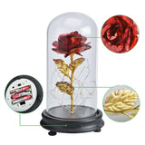 Red Rose Flower in a Glass Dome for Women Valentine's Gifts
