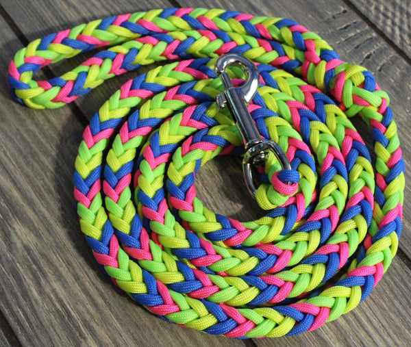 Prism Paracord Dog Leash by The Dog Ladies