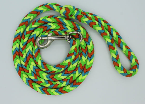 Chameleon Paracord Dog Leash by The Leash Ladies