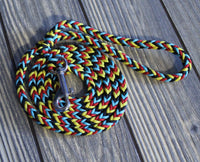 Sunset On the Bay Paracord Dog Leash