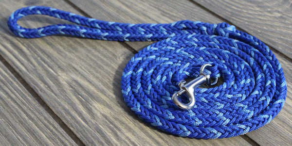 Blue Paracord Leash
