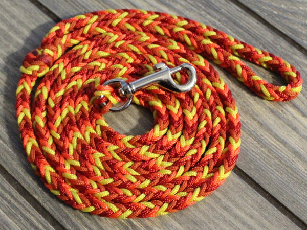 Fireball Paracord Dog Leash by The Dog Ladies
