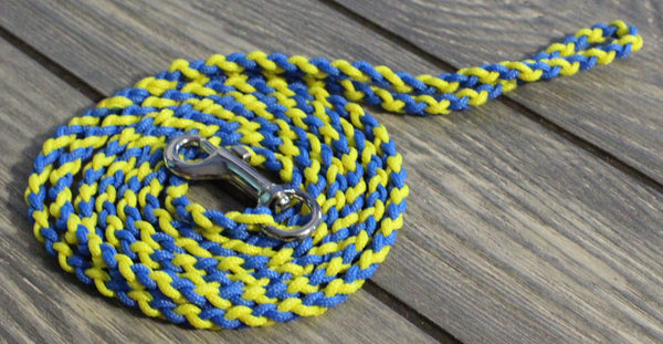Blue and Yellow Twisted Leash by The Dog Ladies
