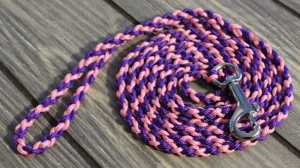 Pink and Purple Twisted Leash