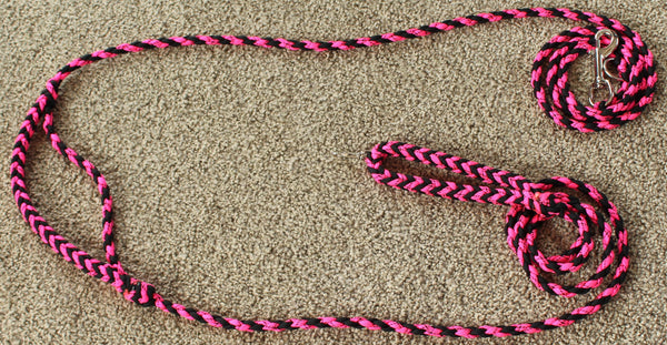 Conversion Leash by The Leash Ladies