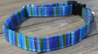Blue and Green Standard Dog Collar