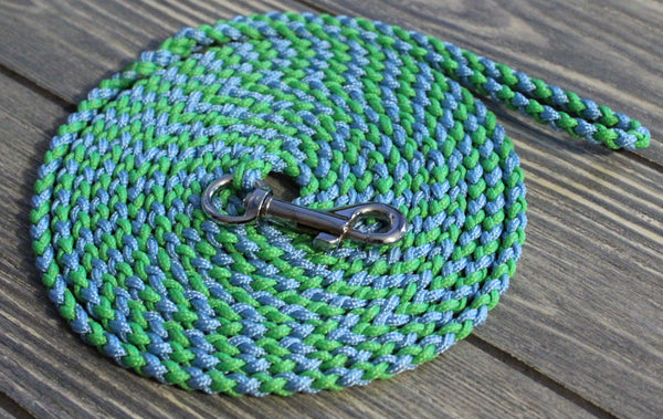 Blue and Green Speciality Leash
