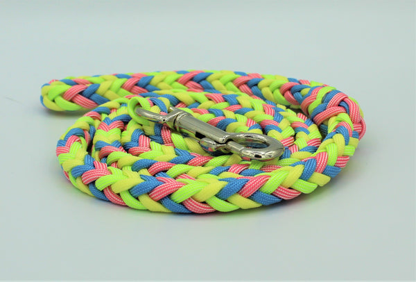 Spring Fling Paracord Dog Leash
