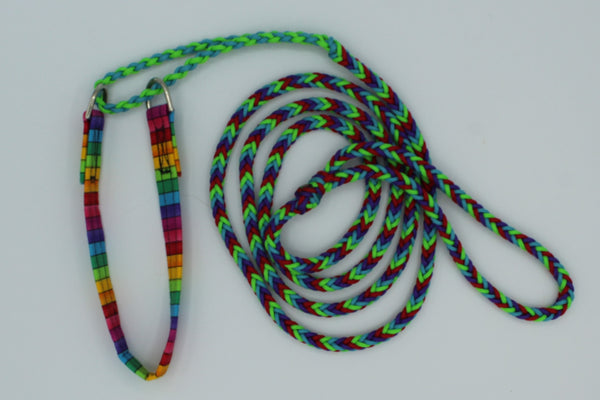 Playtime Paracord Leash with attached Martingale Collar