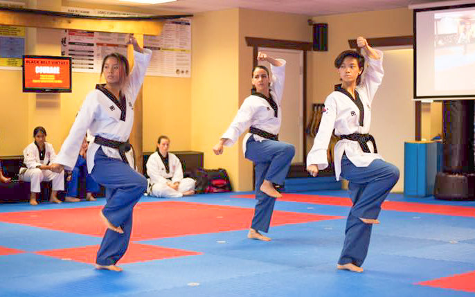 2 Weeks of Virtual Taekwondo Classes for Kids/ Teens/ Adults.