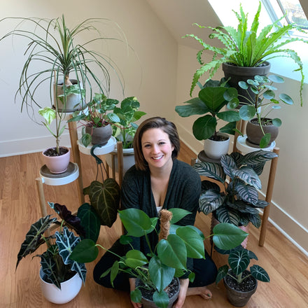 Water & Light Plant Shop's The Plant PeopleⓇ Blog talks to Lindsay from Illinois