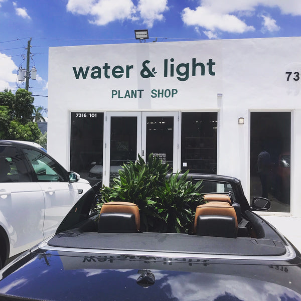 WATER & LIGHT MIAMI IS NOW OPEN!