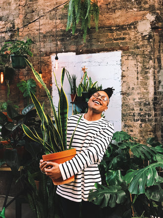 Water & Light Plant Shop's The Plant PeopleⓇ Blog talks to Christopher from NYC