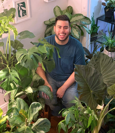 Water & Light Plant Shop's The Plant PeopleⓇ Blog talks to Julian from NYC