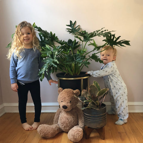 Water & Light Plant Shop's The Plant PeopleⓇ Blog with Lindsay's family at home