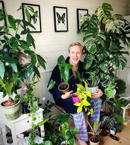 Water & Light Plant Shop's The Plant PeopleⓇ Blog with Oskar and his plant collection