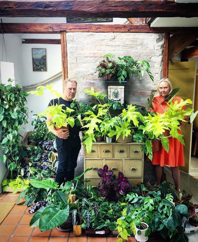 Water & Light Plant Shop's The Plant PeopleⓇ Blog with Oskar's parents and his plant collection