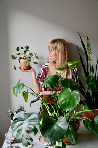 Water & Light Plant Shop's The Plant PeopleⓇ Blog with Brittany and her plant collection