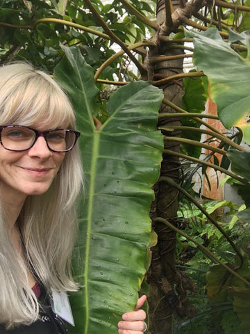 Water & Light Plant Shop's The Plant PeopleⓇ Blog with Kristiana and her philodendron