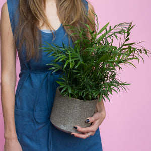 Water & Light Plant Shop girl with Bella Palm