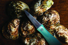 Load image into Gallery viewer, ToadFish Outfitters PUT 'EM BACK™ Oyster Knife