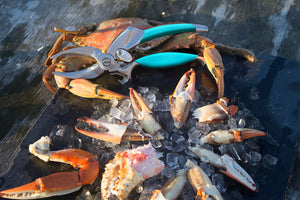 ToadFish Outfitters PUT 'EM BACK™ Crab Claw Cutter