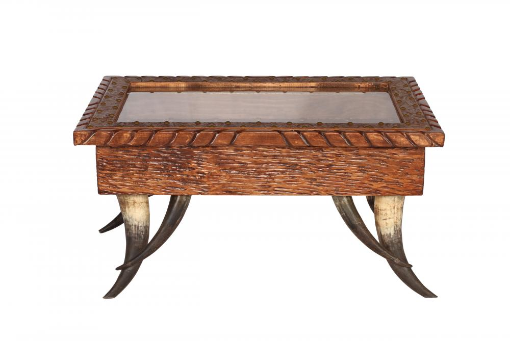Horn Collection Shadow Box Coffee Table