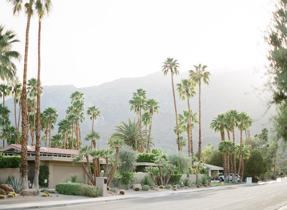 Palm Springs #2, California