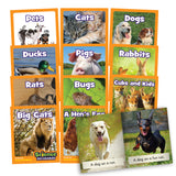 Science Decodables Phase 2 Non-Fiction - 6 Pack