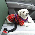 ADJUSTABLE SAFETY BELT FOR DOG