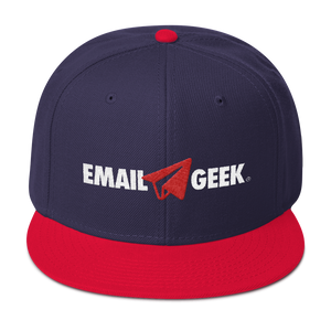 Fly Email Geek (Snapback)