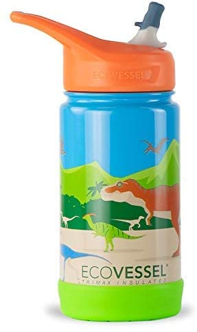 Water Bottle, EcoVessel 13oz, Dinosaur