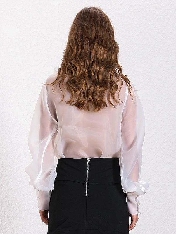 Tie-Neck Sheer Blouse ( 2 Colors)
