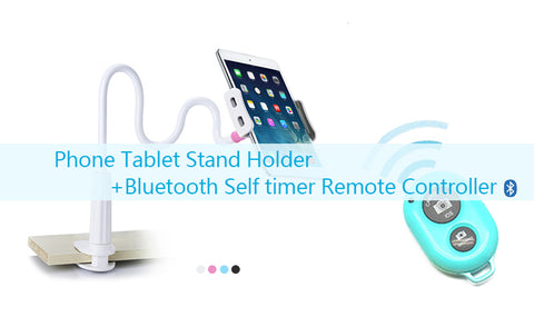 Ipad/Iphone holder with bluetooth controller