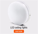Room Ceiling Light