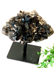 Smoky Quartz Cluster on Stand