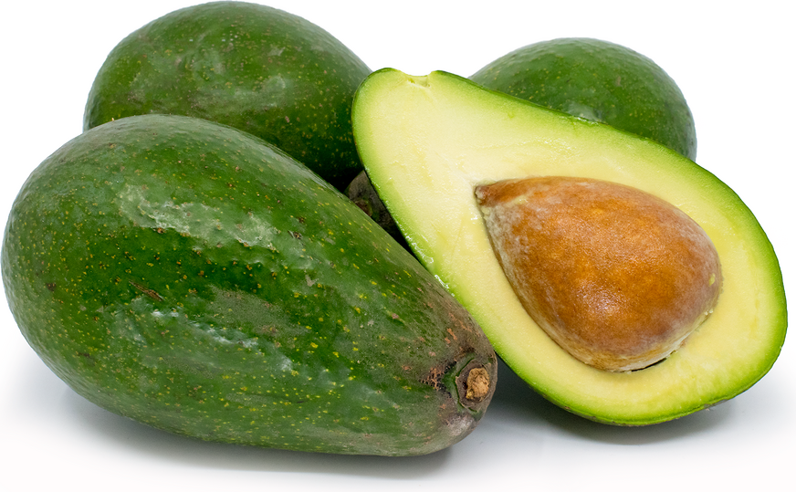 S.R.F | Zutano Avocado | Med./Large each