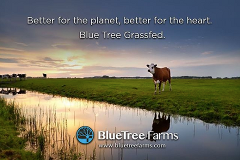 BlueTree | Grass Fed Beef | Lean Ground Beef