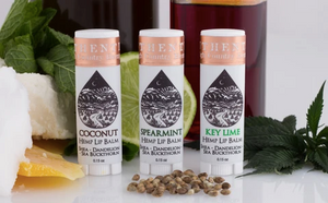 Authentic | Nourishing Lip Balm - Coconut