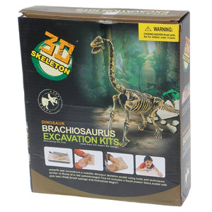 Dinosaur Skeleton Excavation Model Kit -  T-Rex & More