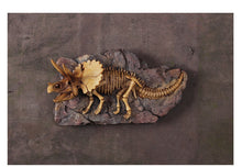 Wall Hanging Handmade Triceratops Fossil