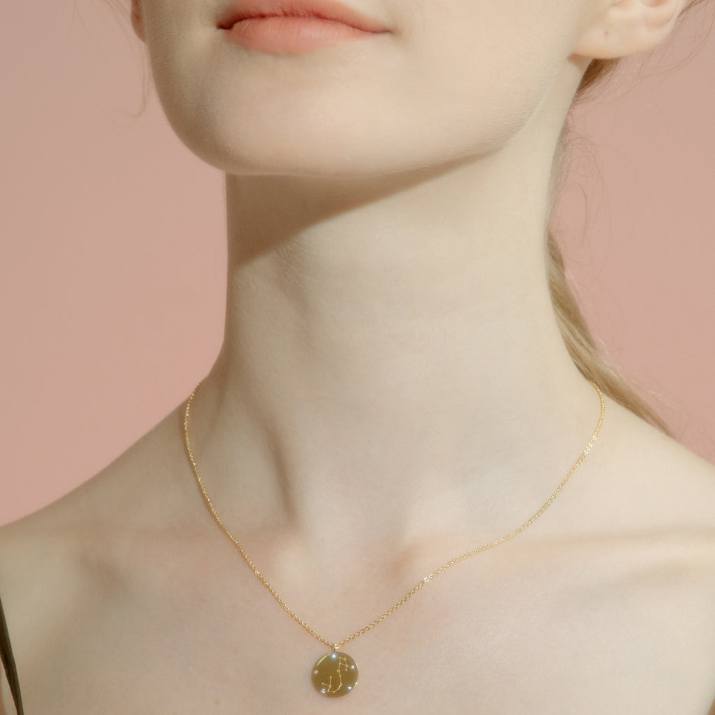 Gold Vermeil Coin Zodiac Necklace - Cofairy