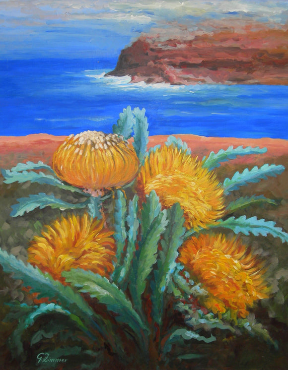 Flowers - Yellow Proteas on Cliff Edge