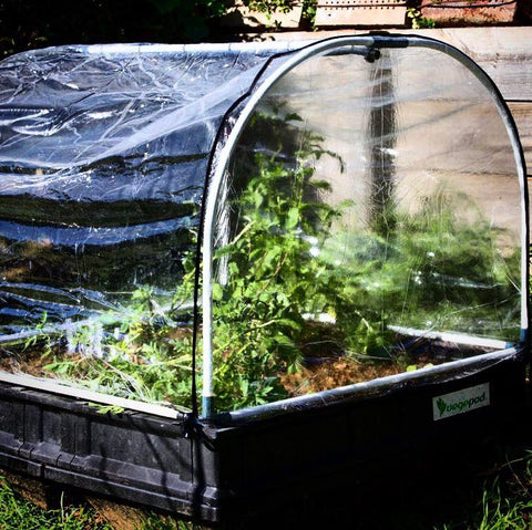 Vegepod hothouse covers will increase your growing season by trapping in heat during cooler months.