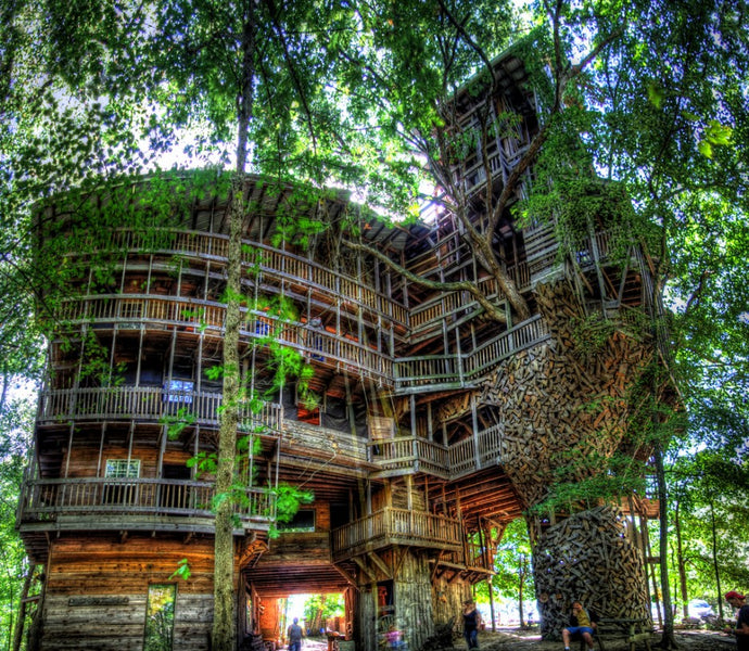 20 Of The Greatest Tree Houses In The World
